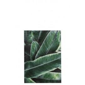 Obraz dekoracyjny Leaves 100x70cm