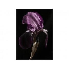 Obraz z fioletowym kwiatem TOIR26605 dwa rozmiary