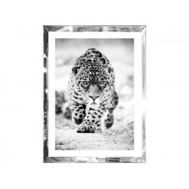 Obraz w lustrzanej ramie gepard 60 x 80 cm S62341